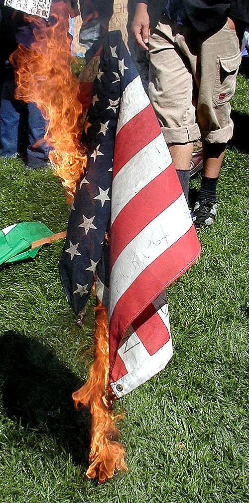 flagburning Essay