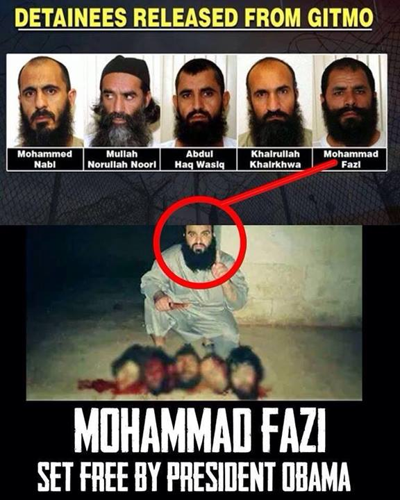 Mohammad Fazi and the Gitmo 5