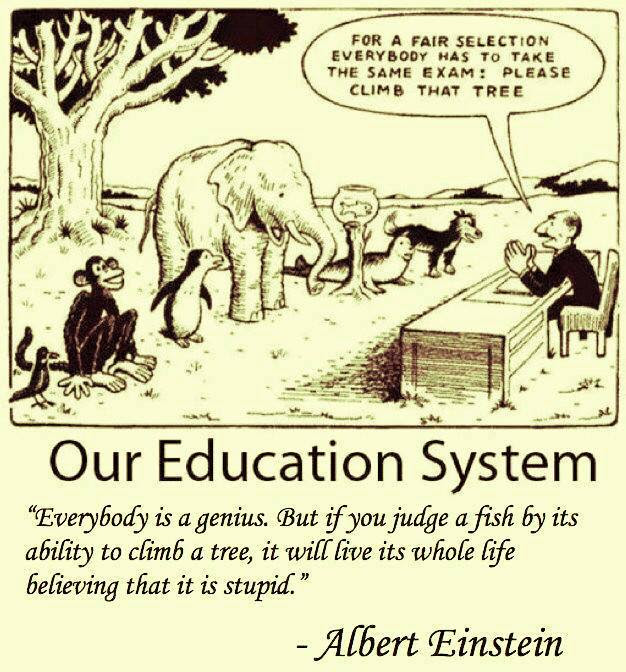 Our public school - factory school system