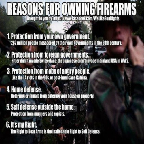 Reasons for owning guns