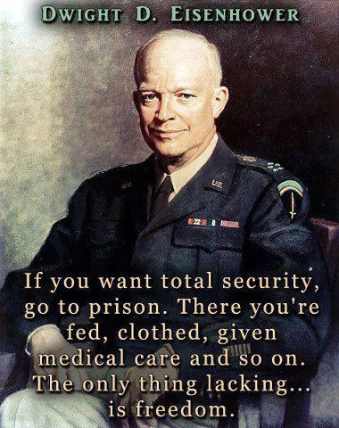 Eisenhower on total security