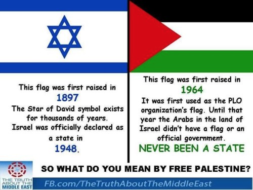 What do you mean by free palestine
