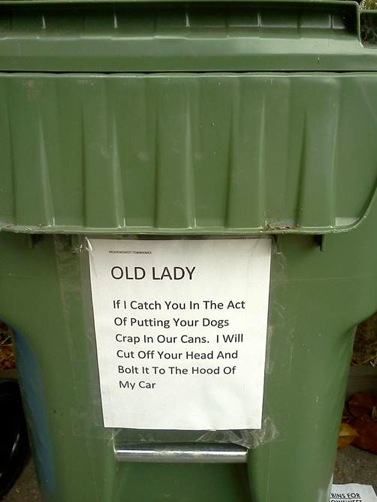 Old Lady trash
