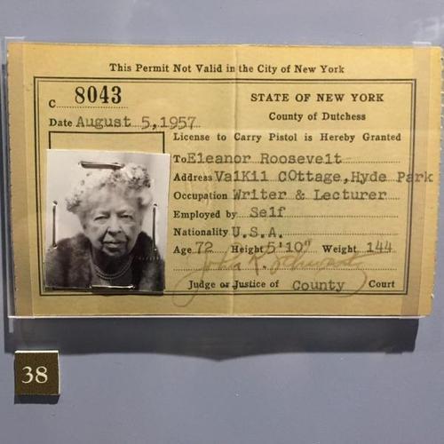 Eleanor Roosevelt gun owner
