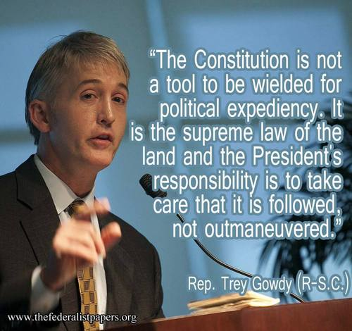 Gowdy on the constitution