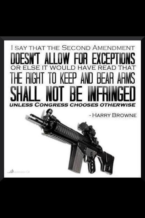 Harry Browne on the Second Amendment