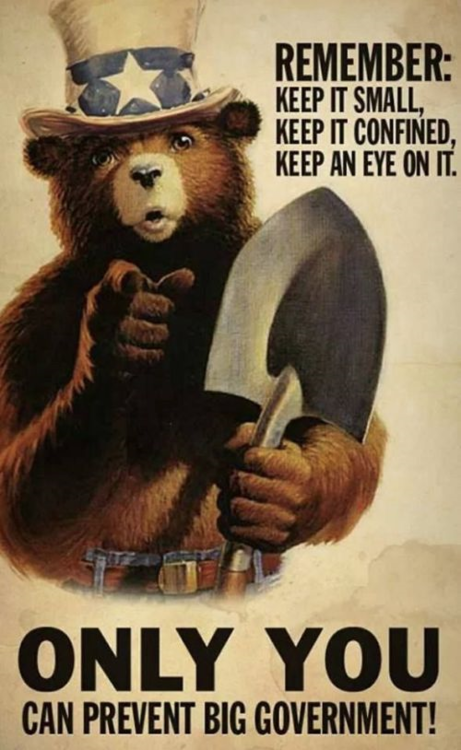 Smokey Only You Can Prevent Big Government