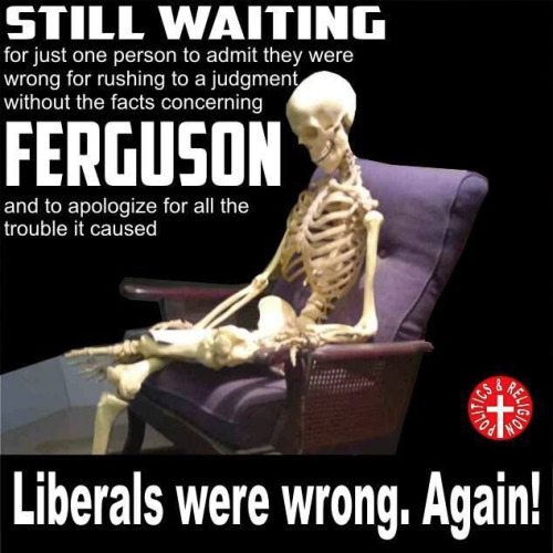 Liberals wrong about Ferguson