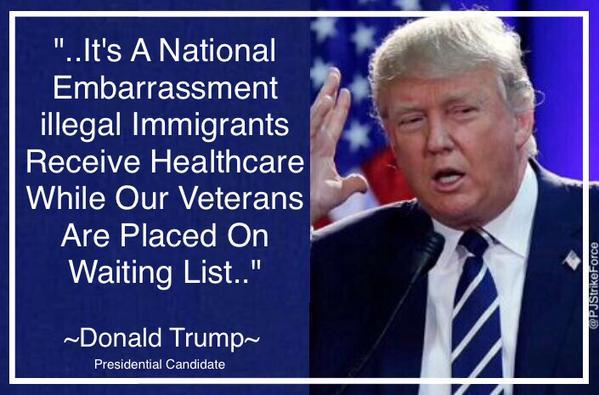 Illegal aliens veterans health care