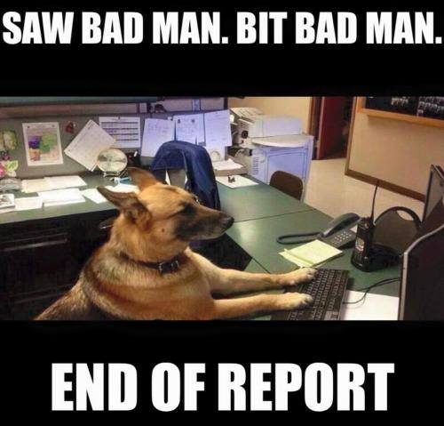 Police dog report