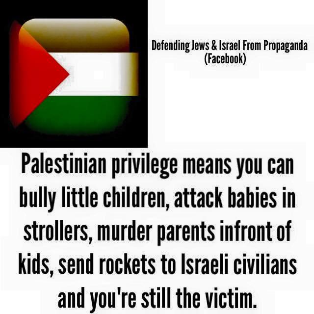 Palestinian privilege