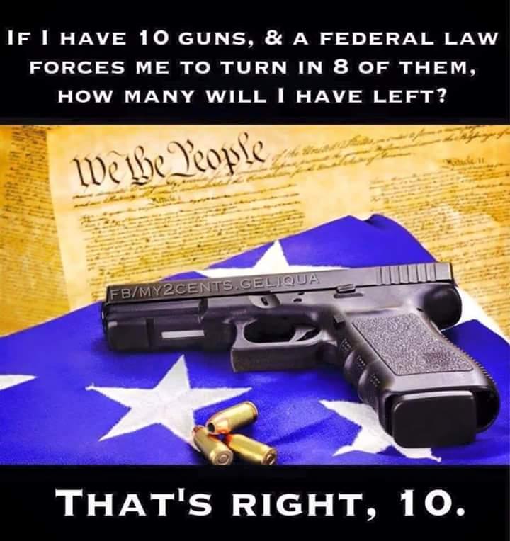Federal government won't get guns
