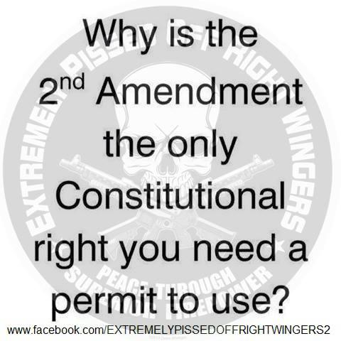Second Amendment permit required