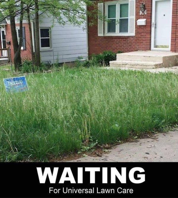 Bernie supporter universal lawn care