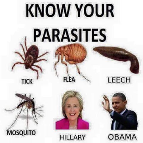 Hillary Obama Parasites Politicians