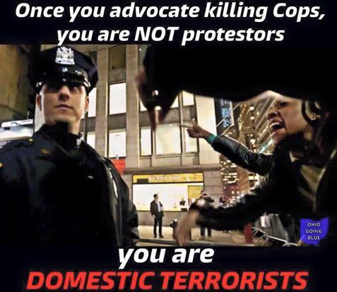 Police killers terrorists