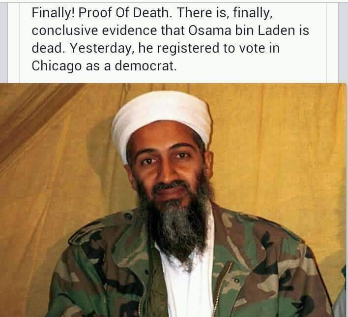 Stupid liberals voter fraud bin laden
