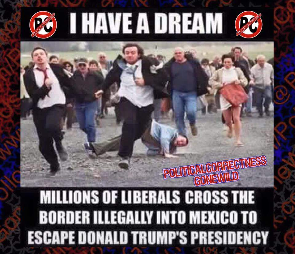 Trump liberals self exile