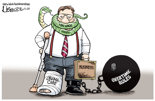 Stupid liberals destroying business