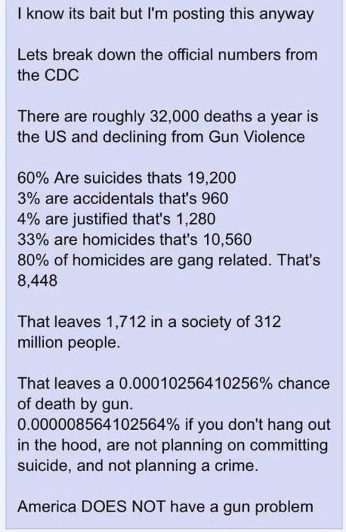 Gun America does not have a gun problem