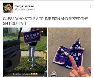leftist-bully