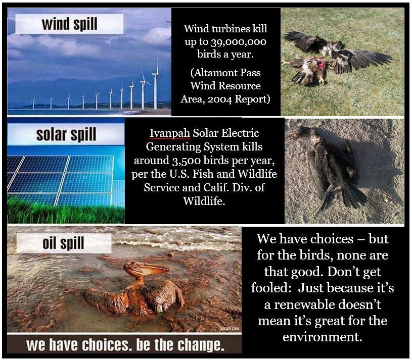 alternative-energy-is-dangerous