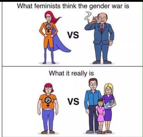 gender-war-against-family