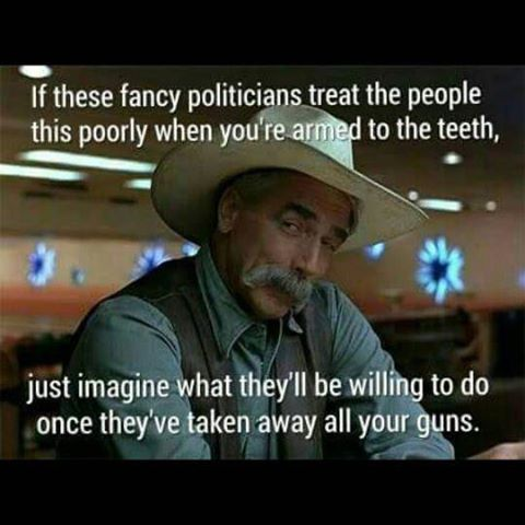 guns-politicians-would-be-worse-if-we-had-none