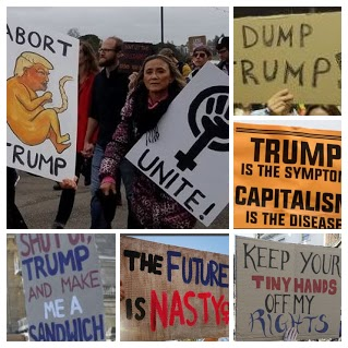 Posters from the pink-hatted women march on Washington