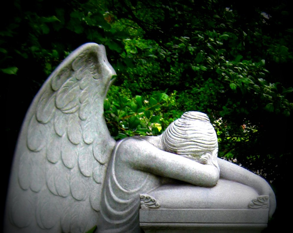 Angel of Grief Weeping Angel Illustrated edition