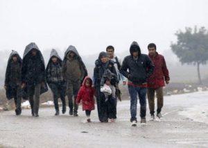 Islamic Immigration Shithole Countries