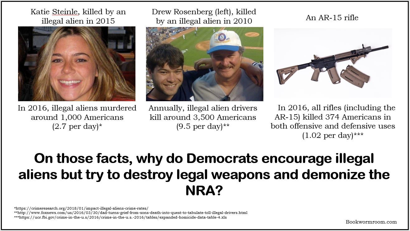 Democrats AR-15 NRA Illegal Aliens Guns