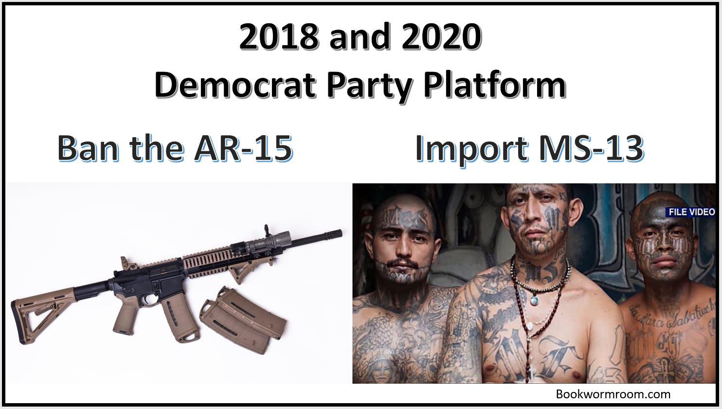 MS-13 AR-15 Democrats