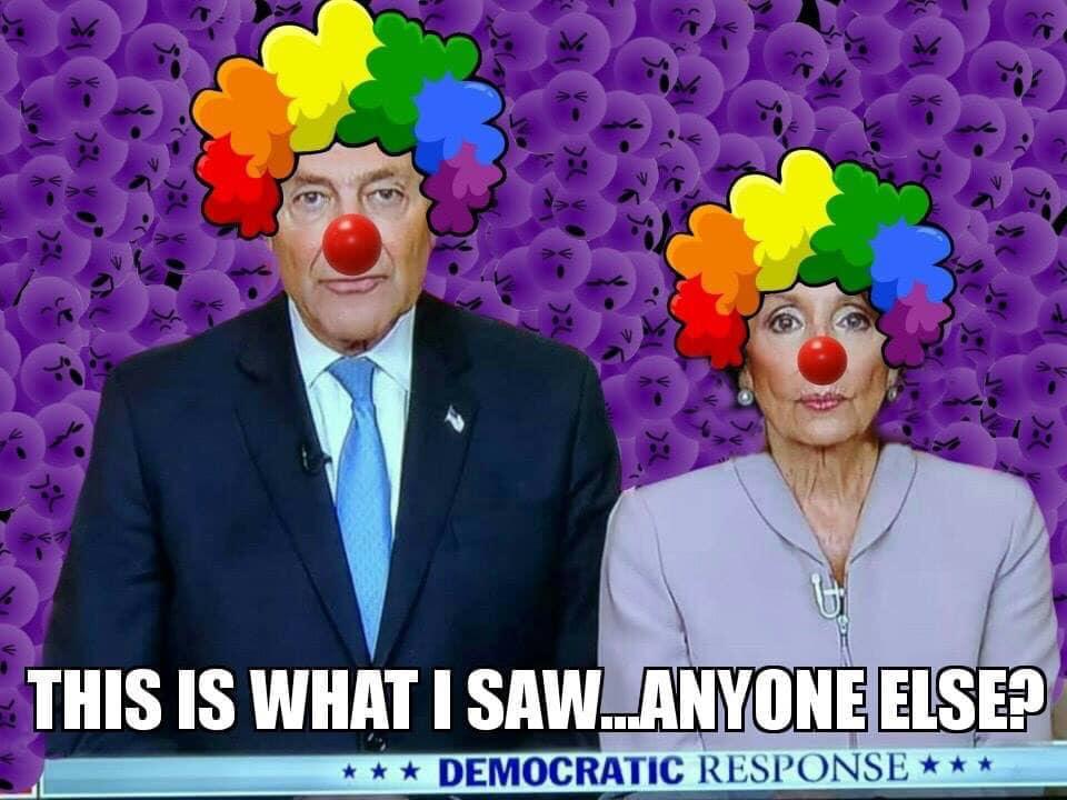 Schumer and Pelosi meme